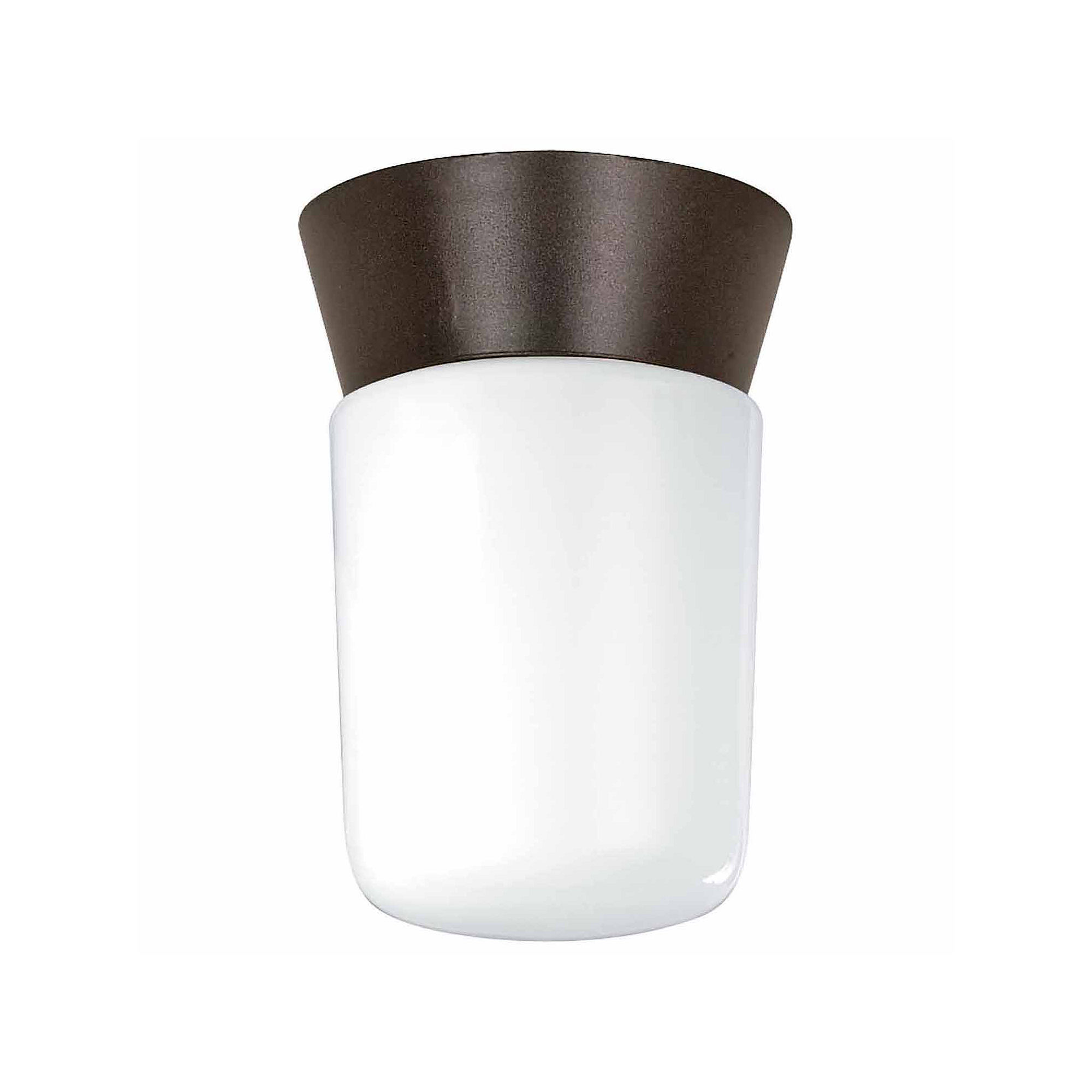 Filament Design 1-Light Black Outdoor Flush Mount